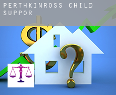 Perth and Kinross  child support