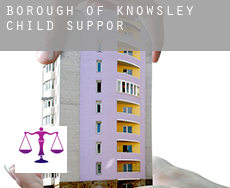 Knowsley (Borough)  child support
