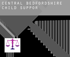 Central Bedfordshire  child support